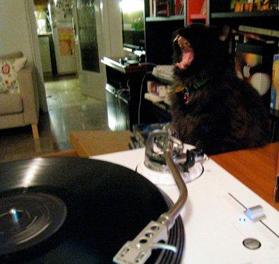 Batman wants vinyl for Dol Ammad