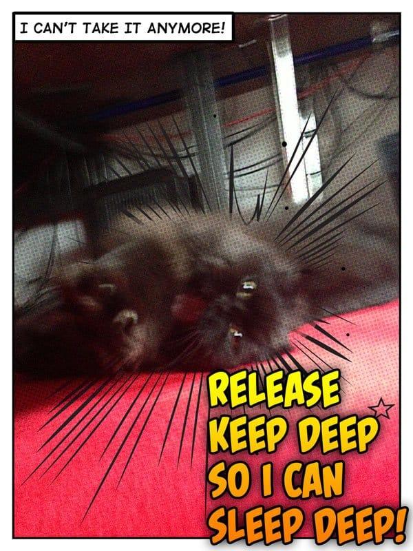"""Batman wants to """"Sleep Deep"""""""