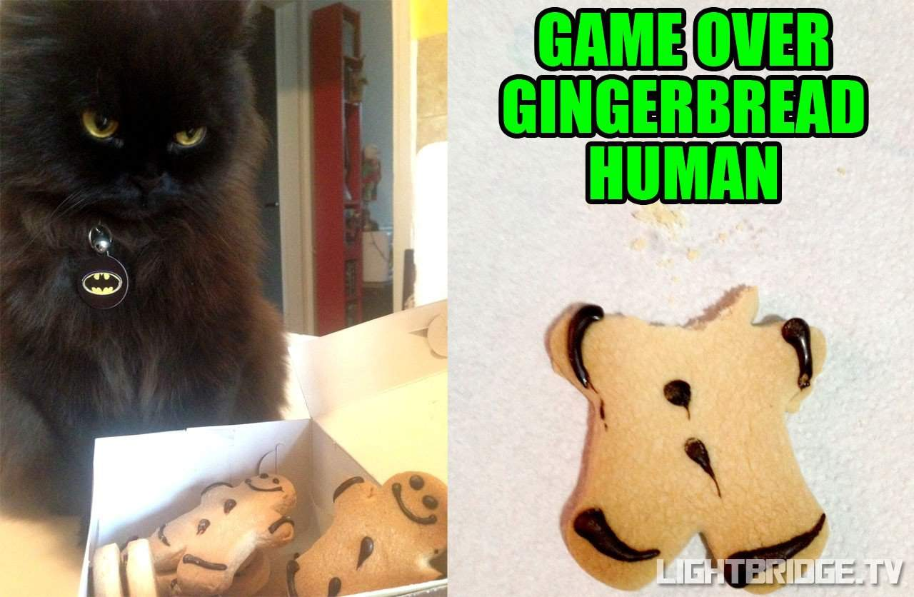Game Over Gingerbread Human