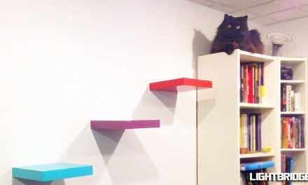 Building Cat Stairs For Batman